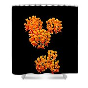 Mickey Flowers Shower Curtain