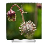 Microcosm Of Beauty Shower Curtain