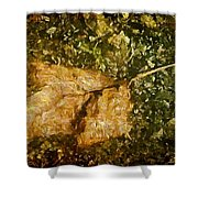 Microcosm Of Fall Shower Curtain