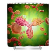 Microscopic View Of Human Anitbodies Shower Curtain by Stocktrek Images