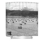 Mid June Colorado Hay  And The Twin Peaks Longs And Meeker Bw Shower Curtain