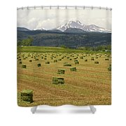 Mid June Colorado Hay  And The Twin Peaks Longs And Meeker Shower Curtain