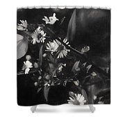Mid-october Butterfly I Shower Curtain