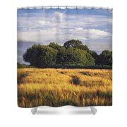Mid Summer Cereal Field Shower Curtain