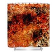 Midas Nebula 2 Shower Curtain