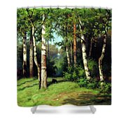 Midday Warmth In A Forest Impressionism Shower Curtain