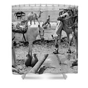Middle East: Water, C1932 Shower Curtain