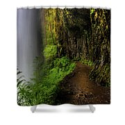 Middle North Falls Grotto Shower Curtain