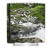 Middle Prong Spring Shower Curtain