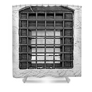 Midieval Window 7385 Shower Curtain