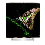 Midnight Butterfly Shower Curtain