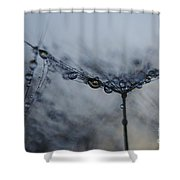 Midnight Drop  Shower Curtain