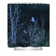Midnight Flight Silhouette Blue Shower Curtain