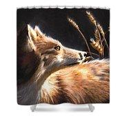 Midnight Fox Shower Curtain