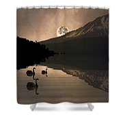 Midnight Moods Swan Lake In The Moonlight Shower Curtain