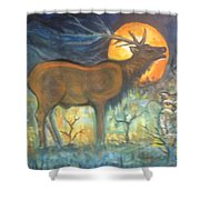 Midnight Mountain Magic 1 Shower Curtain