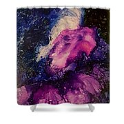Midnight Sky Shower Curtain