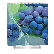Midsummer Harvest Shower Curtain
