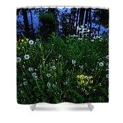 Midsummer Night's Magic Shower Curtain