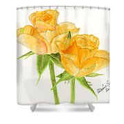 Midsummer Roses Shower Curtain