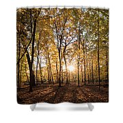 Midwest Forest Shower Curtain