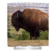 Mighty Bison Shower Curtain