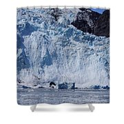 Mighty Holgate Glacier Shower Curtain