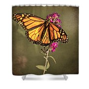 Migrant Worker Shower Curtain