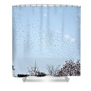 Migrating Birds Shower Curtain