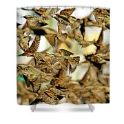 Migration Of The Starlings Shower Curtain