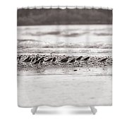 Migratory Mates Shower Curtain