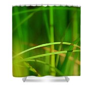 Mikado Shower Curtain