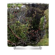 Rowten Pot Shower Curtain