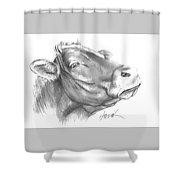 Milk Cow Shower Curtain