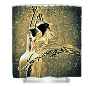 Milk Weed And Hay Shower Curtain by Bob Orsillo