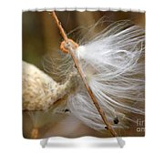 Milkweed Feathers Shower Curtain