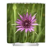 Milkweed Flower Shower Curtain
