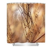 Milkweed In The Breeze Shower Curtain