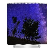Milky Way And Silhouette Trees At Bruneau Dunes State Park Idaho Shower Curtain