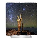 Milky Way Magellanic Clouds And Giant Cactus Incahuasi Island Bolivia Shower Curtain