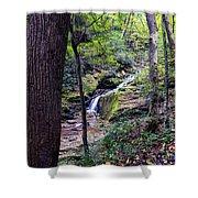 Mill Creek Falls Shower Curtain