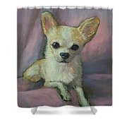 Millie, Chihuahua Shower Curtain