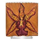 Miltassia Hybrid Shower Curtain