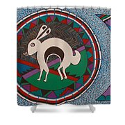Mimbres Inspired #9a Shower Curtain