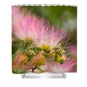 Mimosa Flower Shower Curtain