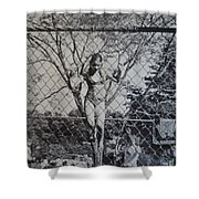 Mimosa Girl Jumps In Shower Curtain
