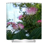 Mimosa Sky Shower Curtain
