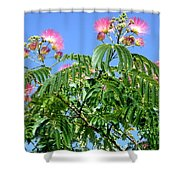 Mimosas In The Sky Shower Curtain