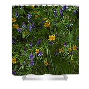 Mimulus And Vetch Shower Curtain
