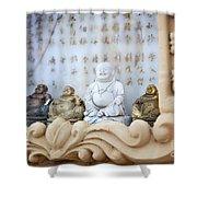 Minature Buddhas Shower Curtain